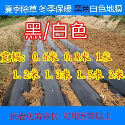 江苏省徐州市新沂市黑地膜 20斤0.14丝