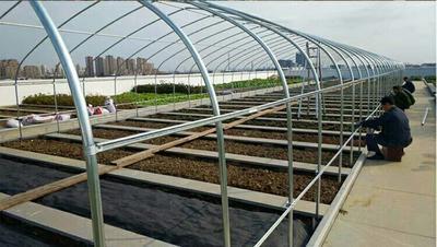 这是一张关于种植大棚 的产品图片