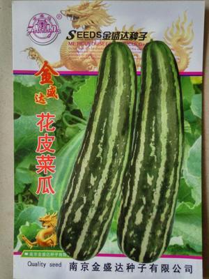 江苏省宿迁市沭阳县花皮酥瓜种子 亲本(原种) ≥85%