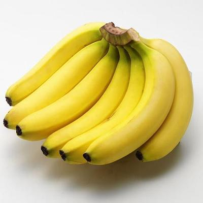 广西壮族自治区南宁市西乡塘区威廉斯香蕉 七成熟