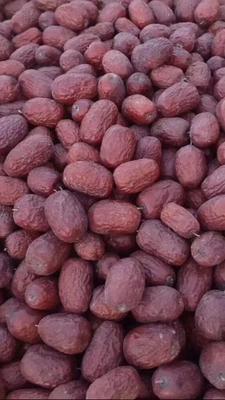 新疆维吾尔自治区巴音郭楞蒙古自治州若羌县若羌红枣 统货