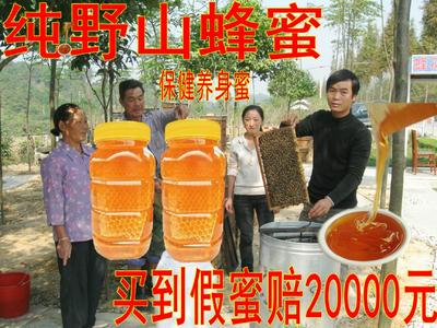 这是一张关于土蜂蜜 塑料瓶装 2年以上 100% 的产品图片