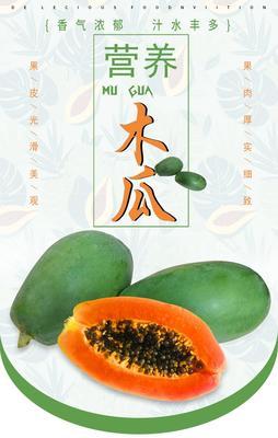 广西壮族自治区南宁市上林县红心木瓜 1 - 1.5斤