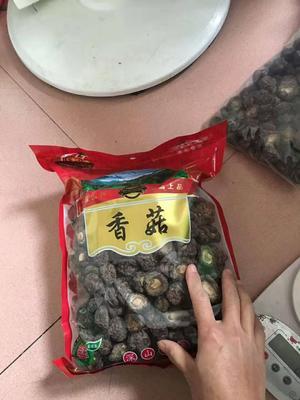福建省龙岩市漳平市原木干香菇 袋装 1年以上