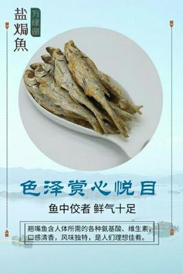 广东省河源市源城区翘嘴白鱼干