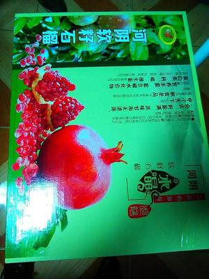 河南省郑州市荥阳市河阴石榴  0.6 - 0.8斤 我们这里是按箱论个头