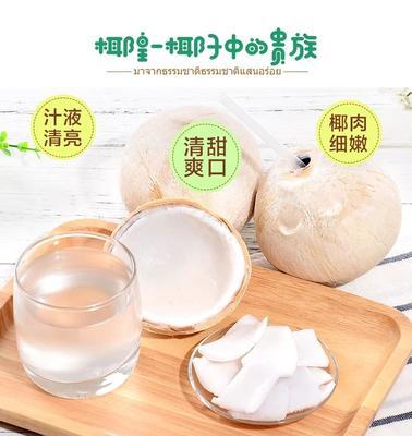 广东省深圳市宝安区椰皇 1 - 1.5斤