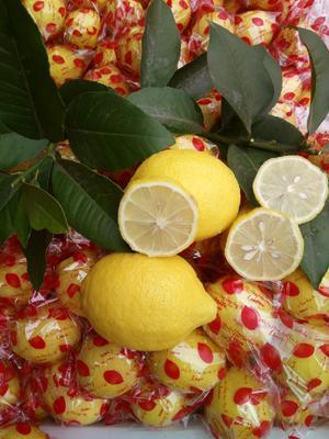四川省资阳市安岳县黄柠檬  2.7 - 3.2两 一级果1斤装包邮