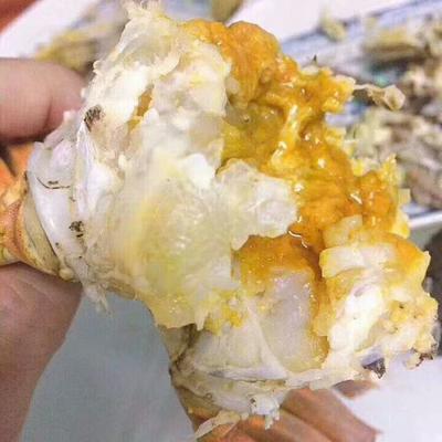 河北省保定市安新县高邮湖大闸蟹 母蟹 2.0-2.5两