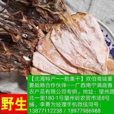 这是一张关于北部湾鱿鱼 的产品图片