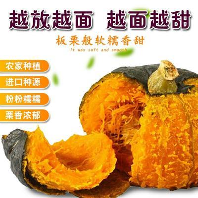 安徽省安庆市怀宁县板栗南瓜  2~4斤 板栗南瓜粉糯香甜