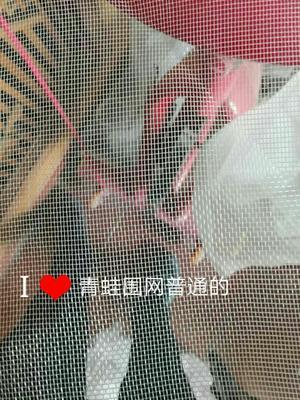 河北省衡水市安平县水产养殖网箱  青蛙天网围网石台网