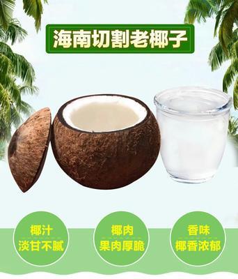 安徽省安庆市怀宁县椰皇  1 - 1.5斤 椰子单果850克以上