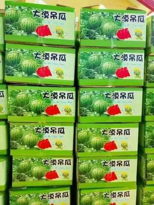 这是一张关于京欣西瓜 3斤打底 9成熟 2茬 有籽 的产品图片