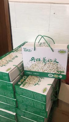 贵州省黔西南布依族苗族自治州兴仁县兴仁薏米 礼盒