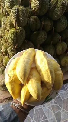 云南省昆明市官渡区泰国甲仑榴莲 2 - 3公斤 90%以上