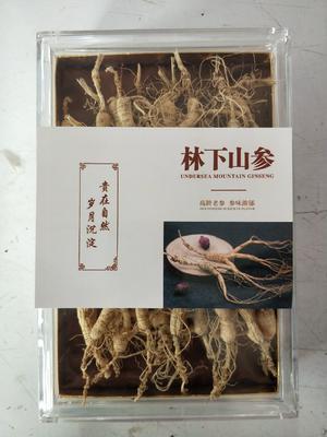 这是一张关于林下参 全须生晒参 的产品图片