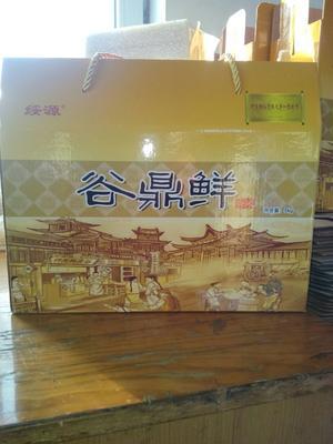 吉林省吉林市船营区稻花香二号大米 一季稻 粳米 一等品
