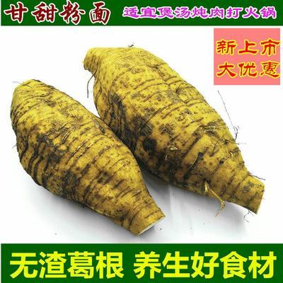 安徽省安庆市怀宁县粉葛  1.0-1.5斤 粉葛根无渣葛根