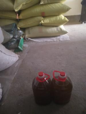 河南省驻马店市西平县物理压榨葵花油