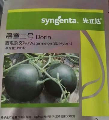 山东省潍坊市寒亭区墨童西瓜 3斤打底 9成熟 1茬 无籽