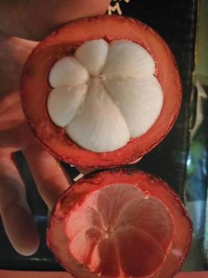 湖南省长沙市雨花区油竹果 3 - 4两以上