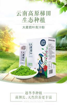 云南省红河哈尼族彝族自治州建水县大麦苗粉 12-18个月