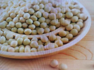 黑龙江省齐齐哈尔市讷河市德美亚1号玉米粒 净货 水份<14%