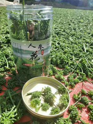 吉林省白山市抚松县人参花茶 二级 罐装