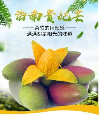 广西壮族自治区南宁市宾阳县贵妃芒 2两以上