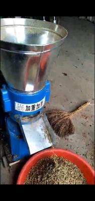河南省郑州市荥阳市饲料颗粒机 加厚加重颗粒机