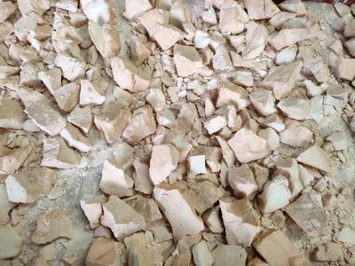 重庆南川区蕨根粉 6-12个月
