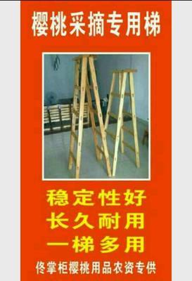 贵州省毕节市纳雍县人字梯