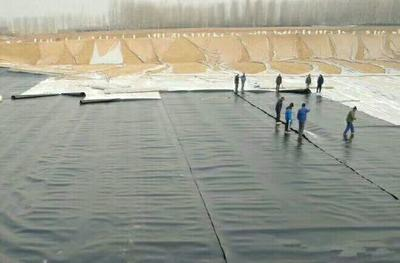 山东省德州市陵城区土工膜