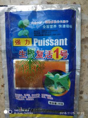 这是一张关于生根剂 油剂 袋装 微毒 的产品图片