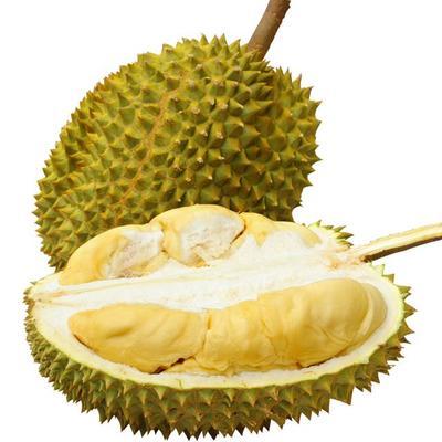 广东省广州市白云区泰国甲仑榴莲  3 - 4公斤 90%以上 果肉香滑细腻