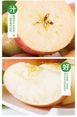 山西省大同市南郊区红富士苹果 80mm以上 全红 膜袋