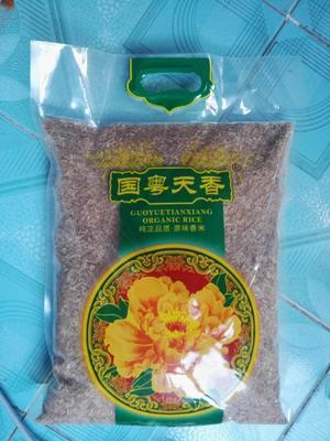 湖南省郴州市汝城县本地原生有机红米