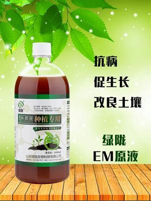 山东省潍坊市诸城市种植EM菌液  促生长 改善土壤