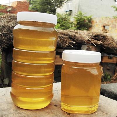 湖南省邵阳市邵东县土蜂蜜 塑料瓶装 1年 90%以上