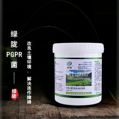 这是一张关于复合微生物菌剂  PGPR微生物菌剂 的产品图片