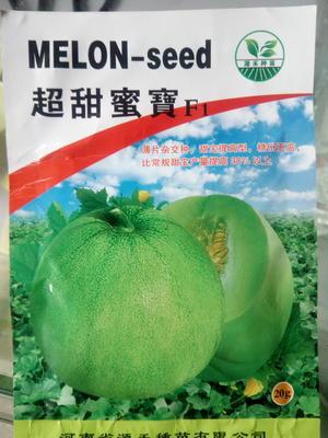 河南省周口市西华县绿宝石甜瓜种子 杂交种 ≥85%