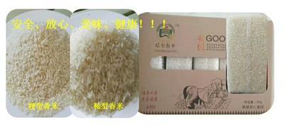 云南省西双版纳傣族自治州勐海县勐海香米 一等品 早稻 籼米