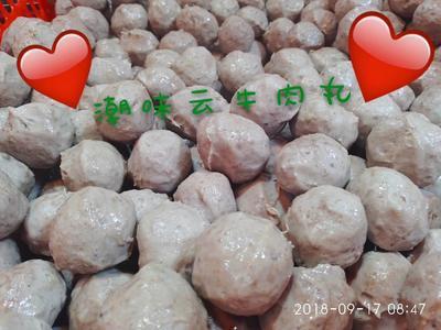 广东省潮州市潮安区牛肉丸