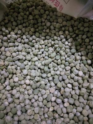 河北省保定市高碑店市青豌豆 7-10cm