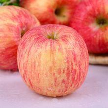 山东省枣庄市滕州市红富士苹果 95mm以上 条红 纸袋