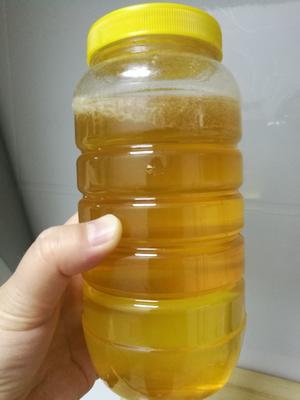 吉林省吉林市龙潭区椴树蜜 塑料瓶装 2年 100%