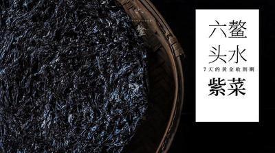 这是一张关于六鰲紫菜 的产品图片