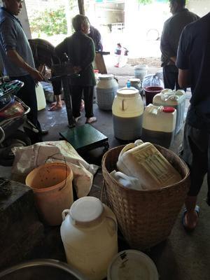 这是一张关于自榨纯菜籽油 的产品图片