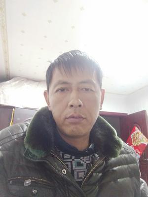 江苏省镇江市扬中市野生黑鱼 人工养殖 0.5公斤以下